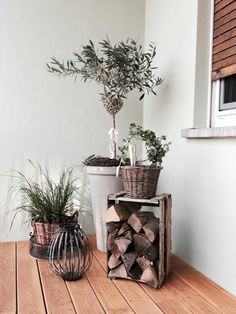 Balkon Landhaus weinkiste ziergras Olive