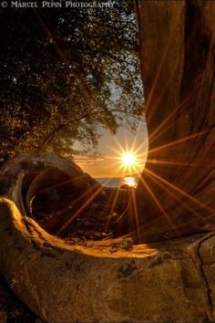 Sunburst photography - from Tennessee