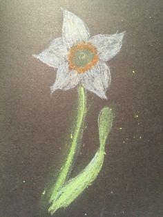 Pastel Practice My Arts, Pastel, Animals, Cake, Animales, Animaux, Animal, Animais, Crayon Art