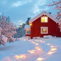 """まったり冬眠したくなる…しあわせ""""おうち時間""""を。<北欧・冬の暮らしのヒント5つ>"""
