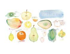 Food Artwork by Lucile Prache