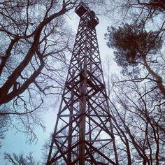 #Gdansk #tower #forest