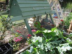 Chicken coop within the garden. <3