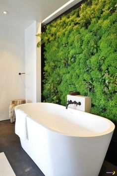 Love the idea of a moss wall to bring in a bright colour