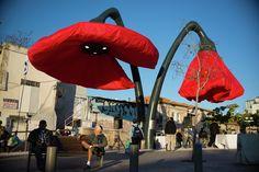 A Jérusalem ces coquelicots géants fleurissent quand il y a des passants