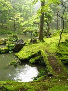Moss covered bridge, Kyoto, Japan