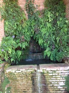 Water feature - Alhambra Palace, Granada