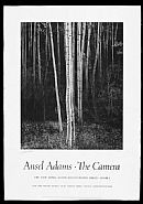 Ansel Adams - Aspens, Northern New Mexico
