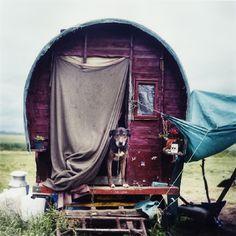 coyotespiritchild      The New Gypsies by Iain McKell  via Calamity Pass Trading Company