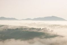 Fog covered mountains and forest in by a454 on Creative Market