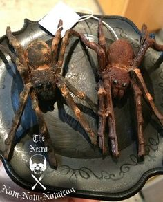 Dark Chocolate Spiders Filled With Marshmallow Eggs: 7 Steps (with Pictures) Halloween Themed Food, Creepy Halloween Food, Spooky Food, Spooky Treats, Halloween Spider, Halloween Desserts, Halloween Party Decor, Holidays Halloween, Spooky Halloween