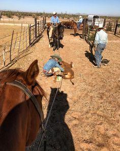 Barrel Racing Saddles, Barrel Racing Horses, Horse Saddles, Horse Halters, Ranch Farm, Ranch Life, Country Life, Country Women, Country Girls