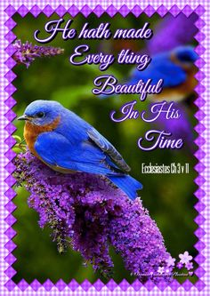 He hath made every thing beautiful In His Time Ecclesiastes Ch 3 v 11 . King James Bible Verses, Scripture Verses, Bible Scriptures, Healing Scriptures, Love The Lord, Gods Love, Faith Quotes, Bible Quotes, Inspirational Scriptures