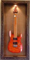 Guitar Display Case, Shadow box, Guitar mount, Guitar wall hanger, Guitar holder, JeLis Decor, DisplayMyGuitar.com