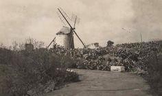 Antigua foto del Molino de Viento de Taco