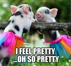 ballet makes everyone feel beautiful:) Now, turn those hooves out a bit more, dear...