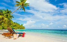 Download wallpapers beach, sea, blue lagoon, palm trees, tropical island, summer travels