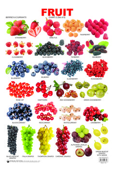 English vocabulary - Fruit Chart 2 catches the attention of tiny tots and makes them aware of the names of various fruits English Tips, English Food, English Writing, English Study, English Lessons, English Grammar, English Class, Food Vocabulary, English Vocabulary Words