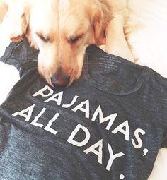 dog likes this 'pajamas all day' tee-shirt