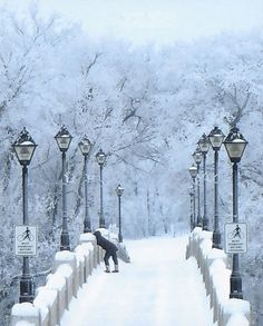 Winter Bridge,  Peter K. Mann