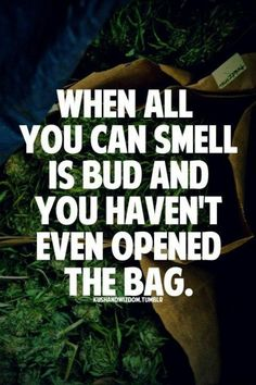 The best weed ever #marijuana #marijuanaquotes http://budposters.com/