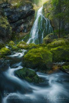Winter Greenery by mabart