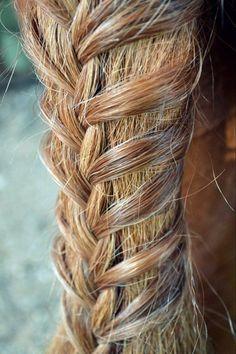 30 Horse Tail Braids Ideas 25