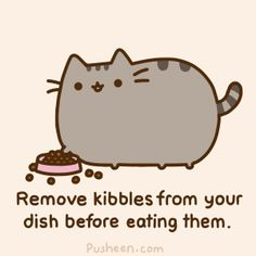 It all makes so much sense! My cat's been following an etiquette guide. No wonder she does stuff like this.