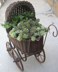 Planted Vintage Containers, anything could show up in a designs garden design interior design Succulents In Containers, Cacti And Succulents, Container Plants, Planting Succulents, Container Gardening, Planting Flowers, Garden Planters, Garden Art, Garden Design