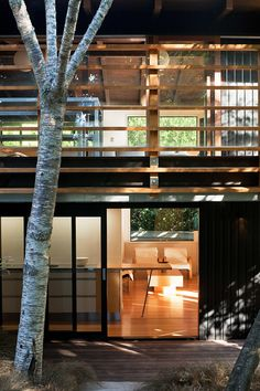 Glade House is located in Remuera, Auckland, New Zealand. Renovation project was conceived and completed by Strachan Group Architects Clear Acrylic Sheet, Exposed Rafters, Chimney Breast, Outdoor Fire, Indoor Outdoor, Auckland, Modern Architecture, House Design, Mansions
