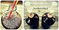 Boj o život: Pravdivý příběh o rostlince, co mě zachránila ze spárů rakoviny Elderberry Growing, Cancer, Mead, How To Make Homemade, World Recipes, Health Advice, Home Brewing, Recipe Box, Acai Bowl