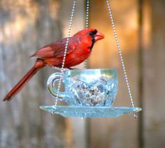 Happy birds on repurposed feeders!