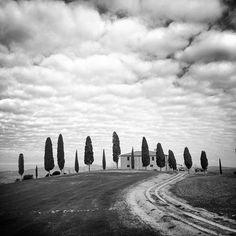 I cipressini di Pienza (#Siena) Fotografare un'icona del paesaggio toscano in bianco e nero agli occhi di molti potrebbe apparire un sacrilegio chiedo perdono... ma questo è il mio modo di vedere il mio mondo! by lili76photo