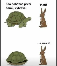 Tortoise and the hare race - Funny Pictures, Funny jokes and so much