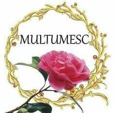 Flower Box Gift, Flower Boxes, Emoji Symbols, Thanks Card, Special Flowers, Emoticon, Wedding Ceremony, Diy And Crafts, Religion
