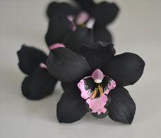 black orchid – CakeArt and Sugarcraft Dark Flowers, Unusual Flowers, Amazing Flowers, Beautiful Flowers, Orchid Cactus, Orchid Plants, Orchid Terrarium, Orchid Flowers, Orchid Flower Arrangements