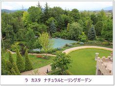 人気ブログランキングへ近年まれにみる大型の台風が近づいてきているせいかまだ風雨はないものの大変蒸し暑い神戸です*初夏から夏の気候に移行してきた秘密の庭では...