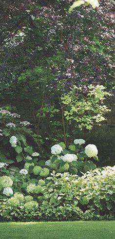 R aliser un massif c est comme peindre un paysage jouez for Realiser un beau jardin