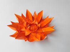 цветок 2 (Алексей Жигулев)