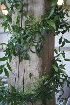 Foliage beam garlanding with fairy lights at Cain Manor | Flower Schemes and styling at Cain Manor located in Churt, designed and created by Hannah Berry Flowers www.hannahberryflowers.co.uk