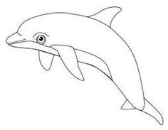 Dolphin Jumps With Good