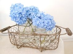 Hydrangeas and wire basket