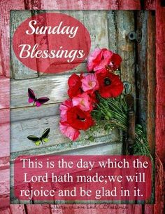 Sunday Blessings! ❤️