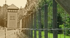 En el marco de la conmemoración por los 70 años del cierre del campo de exterminio de Auschwitz, ha sido publicado en Francia un libro que rescata el valor e heroísmo de los sacerdotes católicos durante la Segunda Guerra Mundial, de los cuales más de 2.500 fueron enviados por los nazis al campo de concentración de Dachau, lugar donde morirían muchos de ellos.