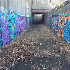 """#throwback #2015  This is where I spent a lot of my random Saturdays & Sundays painting last year during the summer & fall.. Thanks to @jude37 for the picture!  """"The Secret Magic Tunnel of the Forbidden Forest"""" somewhere in the Northeast USA.  There's a huge collection of my murals down there & one collabo wall I painted with @joslart .. And there's still more empty walls down there and other places to explore in the area to paint at too.. And the legal wall in Red Bank that I should utilize…"""