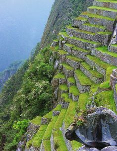 Stone terrace at Machu Picchu, Peru.