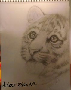 Baby tiger drawing