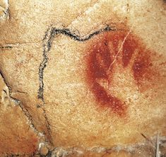 A Gallery of Cave Paintings from the Chauvet Cave as part of the Bradshaw Foundation France Rock Art Archive. The Chauvet Cave is one of the most famous prehistoric rock art sites in the world. Chauvet Cave, Lascaux, Ancient Symbols, Ancient Art, Ancient Egypt, Gaule Romaine, Paleolithic Art, Prehistoric Age, Stone Age Art
