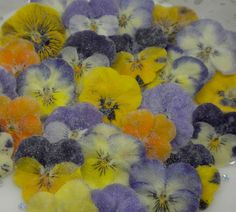 Crystallised edible Violas in a mixed box of all available colours. Unique Flowers, Edible Flowers, Belgian Chocolate, Crystal Flower, Growing Flowers, Beautiful Gardens, Color Mixing, Dog Food Recipes, Unique Gifts