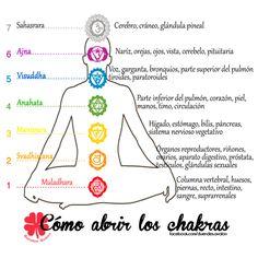 Portal 11 Acuario: Cómo Abrir nuestros Chakras...